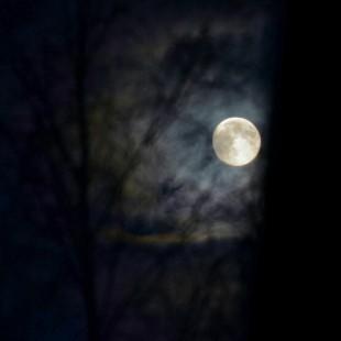 instagram_moon_risor_01