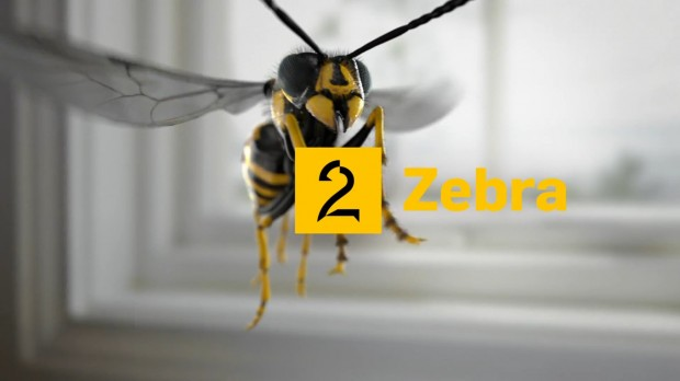 tv2_zebra_ny_logo_september2013
