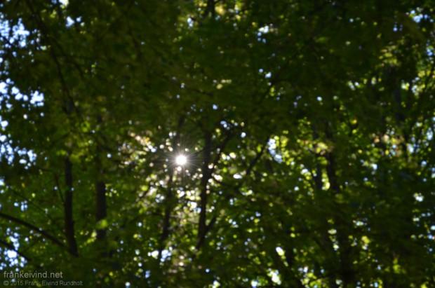 Frognerparken-Vigelandsparken