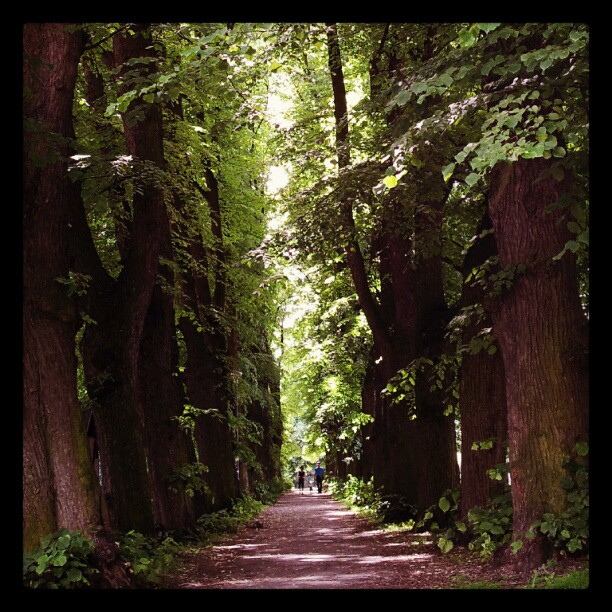 Instagram: Inngangen til Bjølsenparken