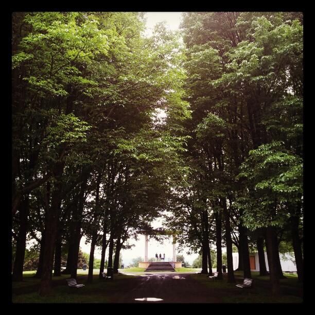 Instagram: #Torshovparken #torshov #pavillion #tre #tree #green #grønn