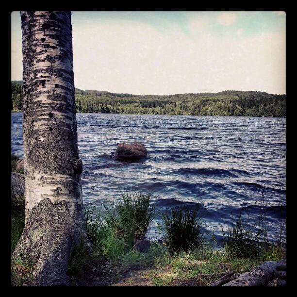 Instagram: Sognsvann