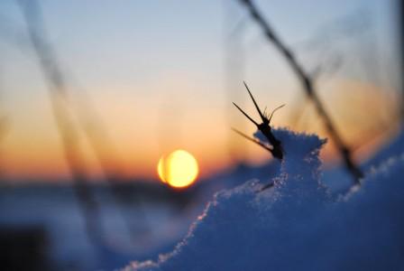vinterbilder_02